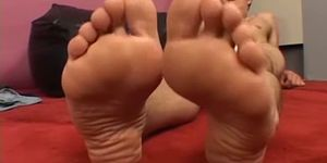 Smooth stud playing with his big gorgeous feet