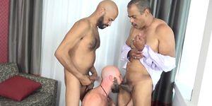 Oso barbudo spitroasted en trio interracial