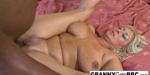 Busty bikini granny sucks and fucks the black cock
